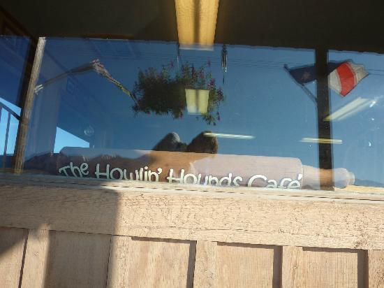 Howlin Hounds Cafe: Front window