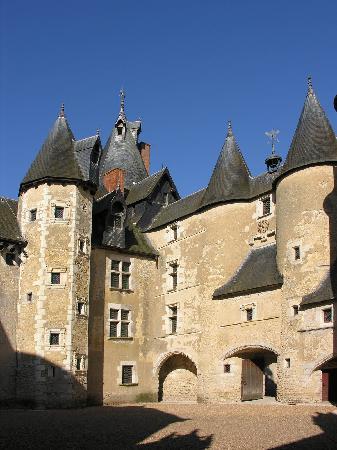 Chateau de Fougeres-sur-Bievre: particolare