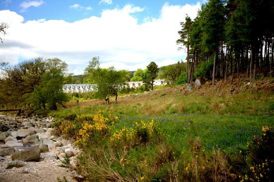 Kippure Estate : 240 acres private estate