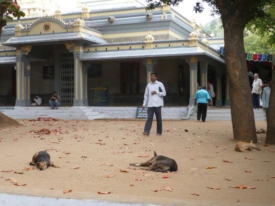 Sri Ramana Ashram: Ramana Ashram