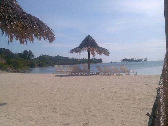 Turquoise Bay Dive & Beach Resort 사진