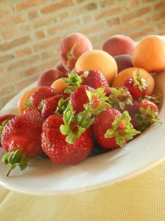 Ristorante Agriturismo Balcone sulle Langhe: Frutta a colazione