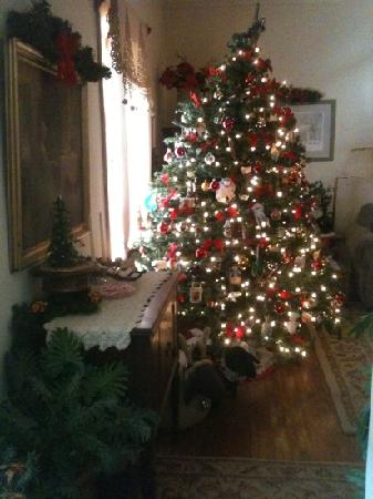 Huntersville, Virginie-Occidentale : the tree in the parlor