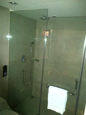 Wyndham Grand Plaza Royale Hangzhou: shower