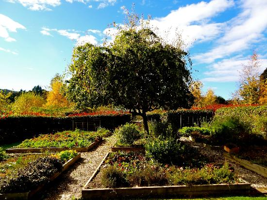 Edenhouse - Luxury Lodge: Landscape