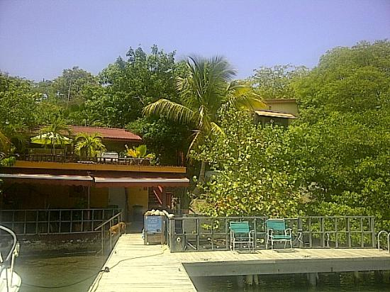 Villa Pelicano: view from the back