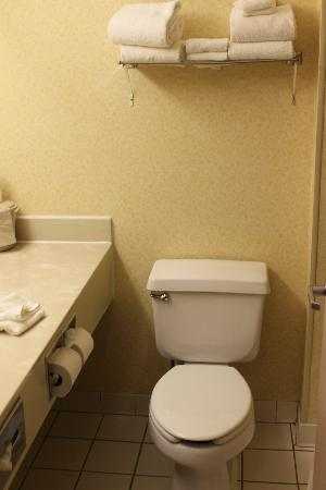 Fairfield Inn & Suites Sioux Falls: Bathroom
