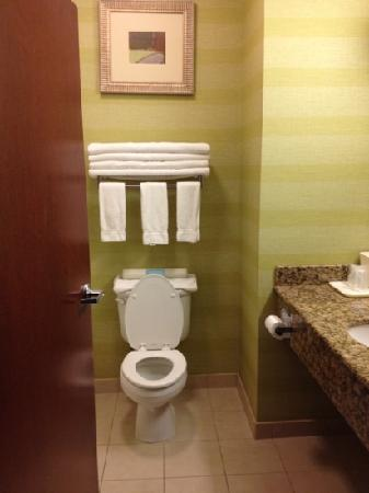 Holiday Inn Express Hotel & Suites Reno: standard bathroom (clean)