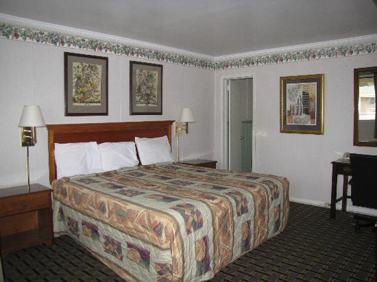 Rodeway Inn: king size bed room