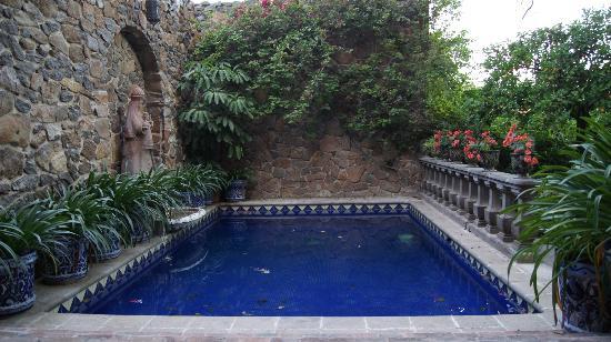 Casa Schuck Boutique Hotel: Alberca