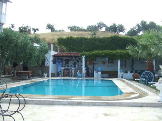 Villa Panaroma: Pool area