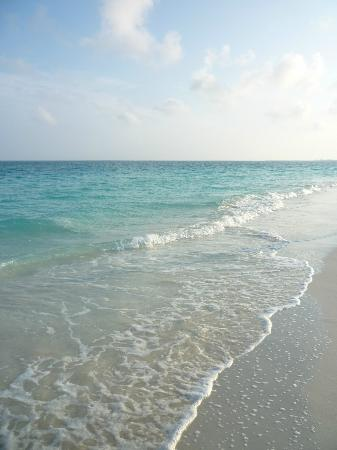 Grace Bay: The early morning-walks is the Best!!!