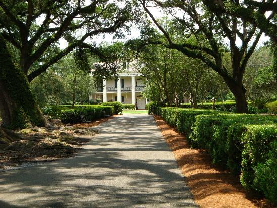 The slave quarters-replica - Picture of Oak Alley ...