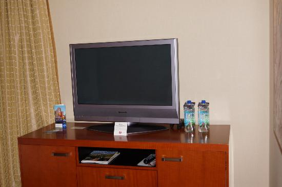 The Paramount Hotel: TV