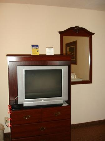 Best Western Amador Inn: T.V. Room 214