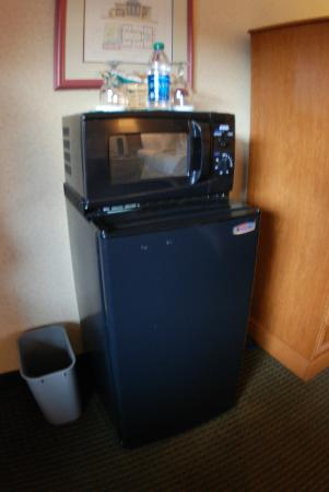 Days Inn Asheville/Mall: Microwave and Mini Fridge