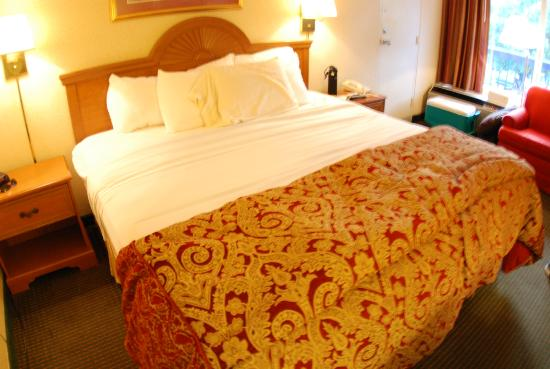 Days Inn Asheville/Mall : King size bed