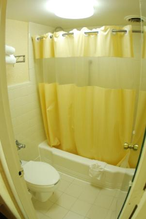 Days Inn Asheville/Mall : Bathroom and Shower