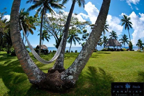 Paradise Taveuni: Lush Property