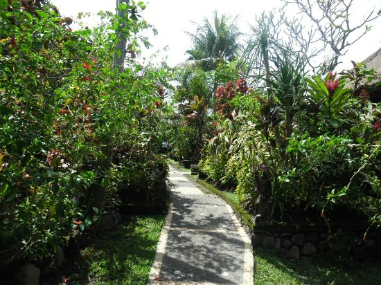 Ubud Inn Cottages: Lush gardens