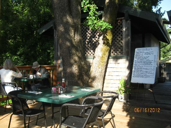 The Two Bird Cafe: The patio