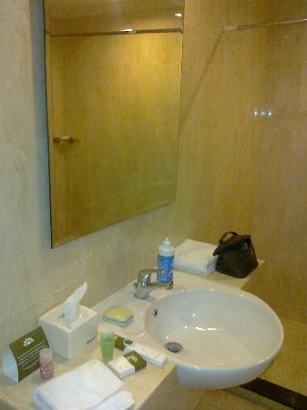 Hotel Merdeka : The sink