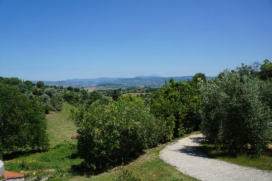 Agriturismo Poggio del Drago: view from the patio of the Poggio del Drago