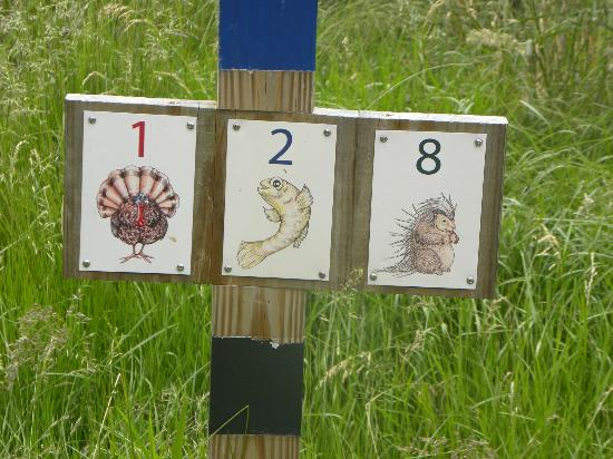 Wells Reserve at Laudholm: Cute trail marker symbols.