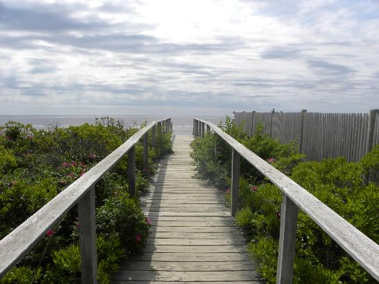 Wells Reserve at Laudholm: The walkway heading to the beach.