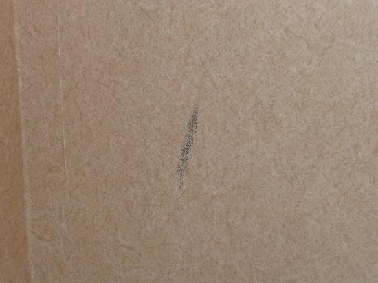 Sheraton Sioux Falls & Convention Center: Giant scuff mark on the wall.