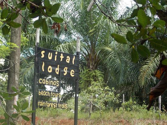 写真Suital Lodge枚