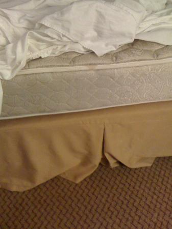 Holiday Inn Express Findlay: Flat mattress that sheets wouldn't even stay on...