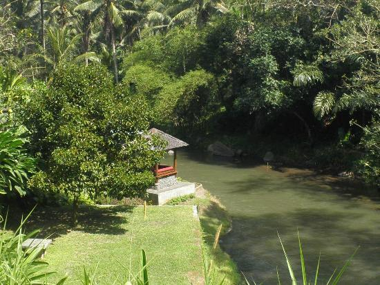 Villa Semana: View of the river