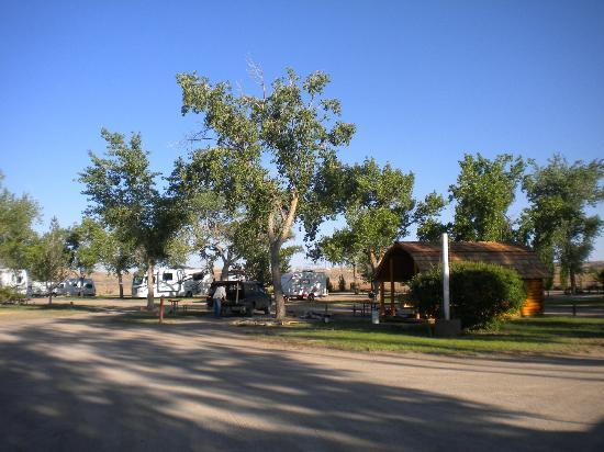 Green River KOA Camground : lots of tree for shade