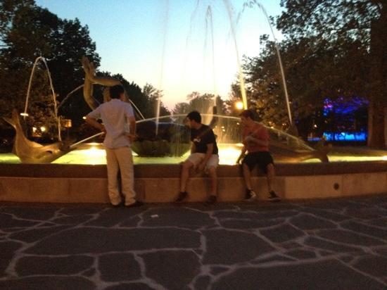 Indiana University : fountain at dusk