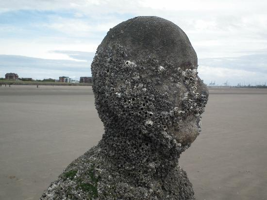 How Long Have The Iron Men Been On Crosby Beach