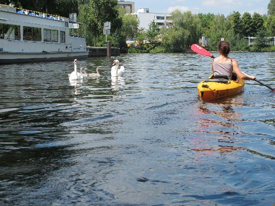 Kayak Berlin