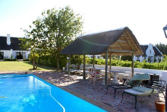 Bellevue Manor Guesthouse: pool area