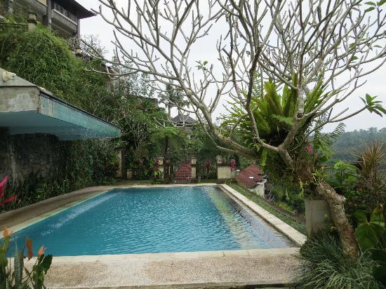 Rijasa Agung  - Bali Ubud Luxury Hotel Resort Villa: lower pool