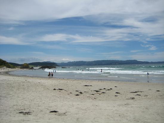 Tawharanui Regional Park: The Beach