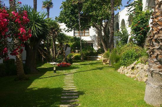 S'Algar, إسبانيا: jardines del hotel 