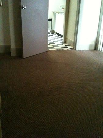 Castle Apartments: Dirty, stained carpet