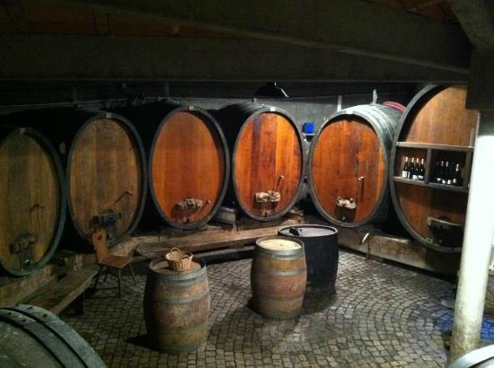 Vignoble Klur : The casks.