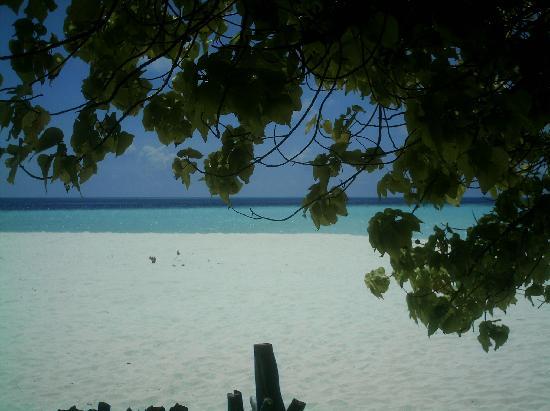 Vaavu Atoll: spiaggia