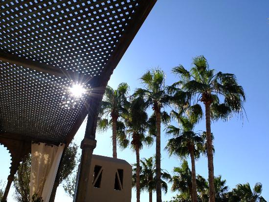 Les Jardins de la Medina: Solarium