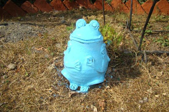 Moksha Retreat: A terracotta frog in Garden