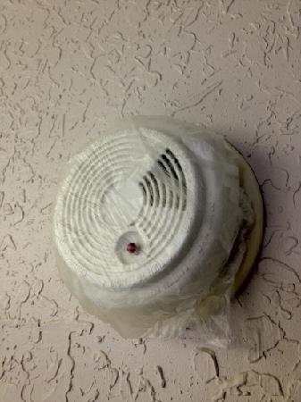 Microtel Inn & Suites by Wyndham Marianna: smoke alarm