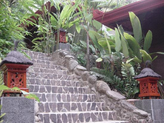 Waterfall Villas: Lush and beautifully decorated