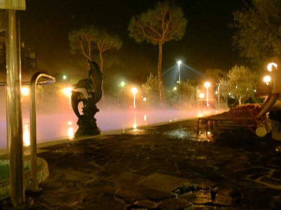 Petrarca Hotel Terme: Открытый бассейн
