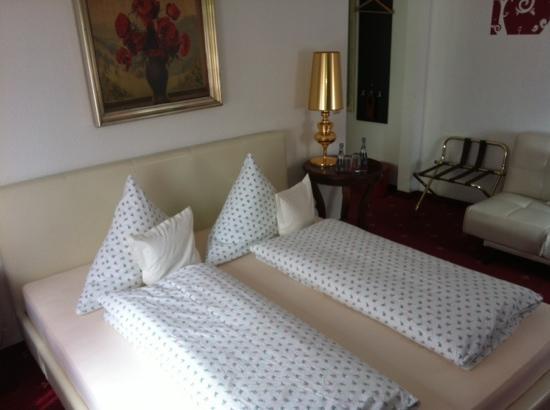 Hotel Geissler: room 12